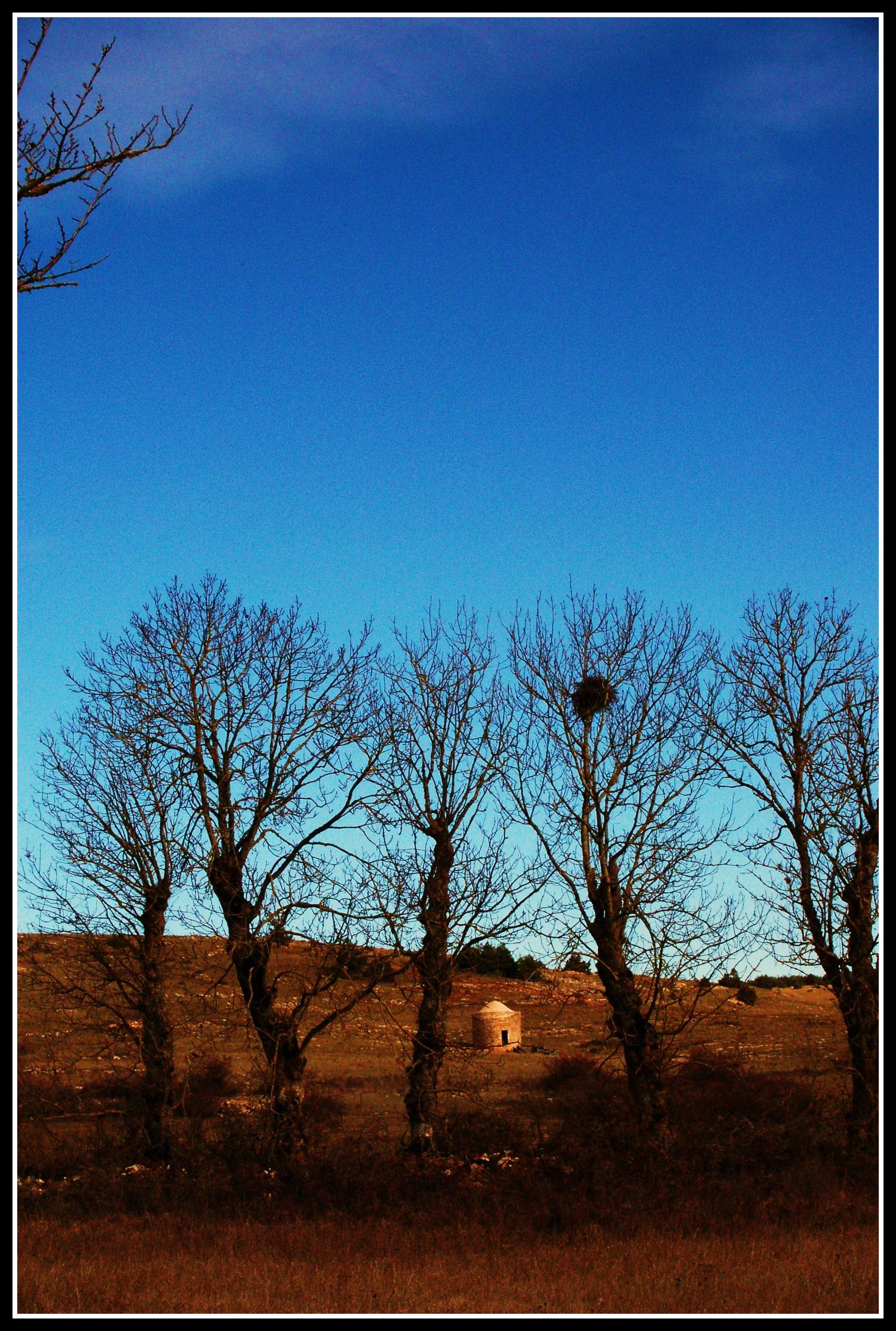 Le Pigeonnier des Mazes